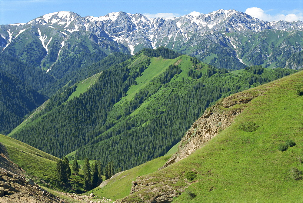 Forested hills and snow capped mountains at Tianshan near Sayram Lake in Xinjiang, China, Asia