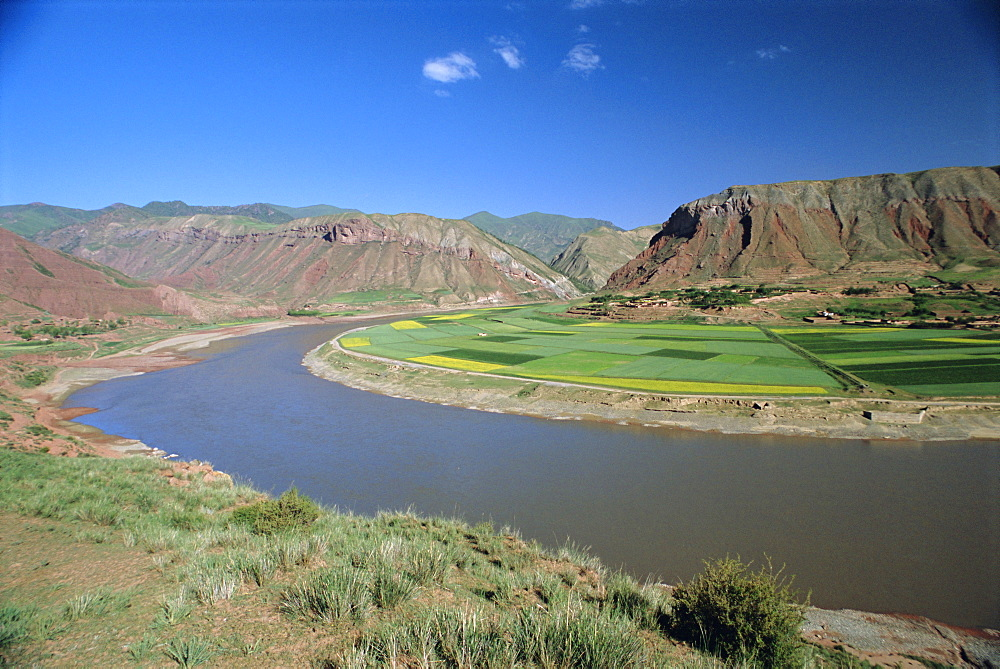 Rape and barley fields by the Hwang Ho, Yellow River, at Lajia, Qinghai Province, China
