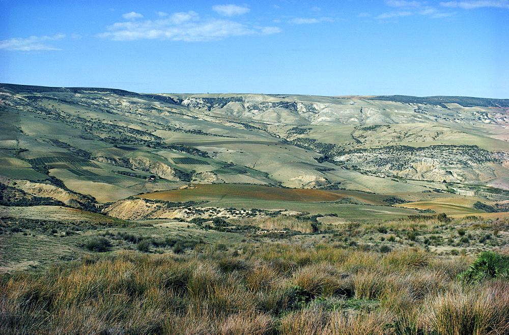 Farmlands near Oran, Algeria, North Africa, Africa