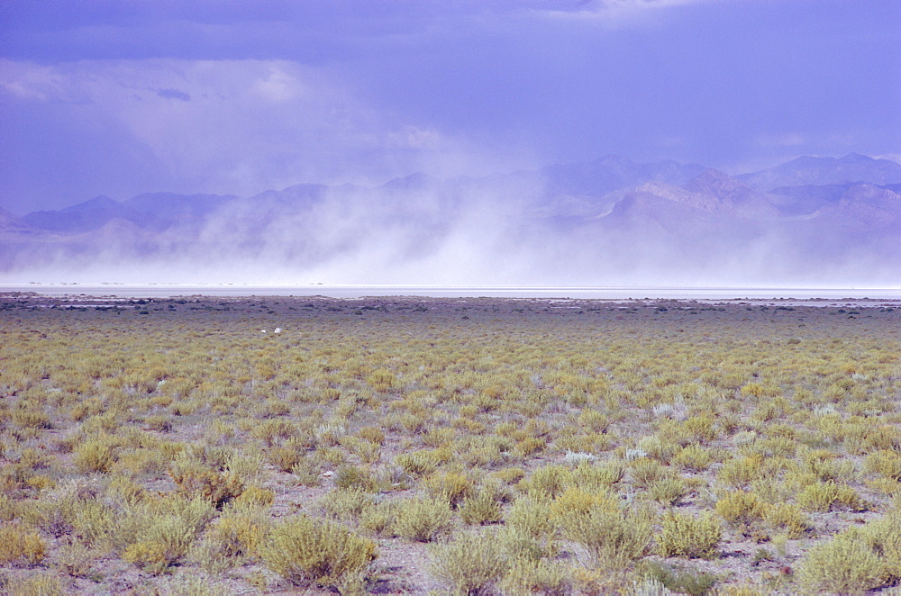 Salt Flats, Nevada, Usa, Dust Storm