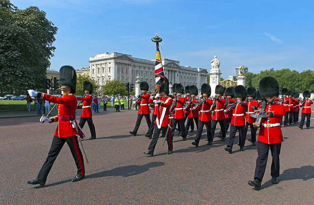 Grenadier Guards march to Wellington Barracks after Changing the Guard ceremony, London, England, United Kingdom, Europe - 190-9809