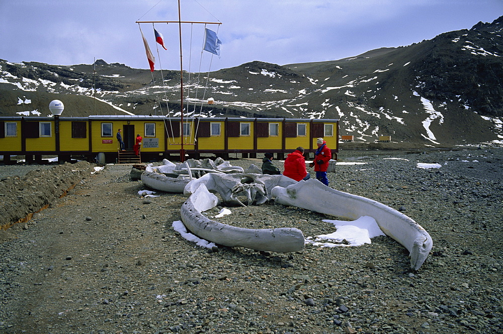 The Polish Arctowski Base, King George Island, South Shetland Islands, Antarctica, Polar Regions - 197-2672