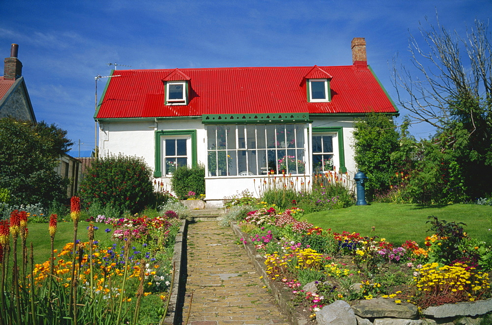 Flower beds line a brick path up to a typical private house, with bright red corrugated roof, in Stanley, capital of the Falkland Islands, South America