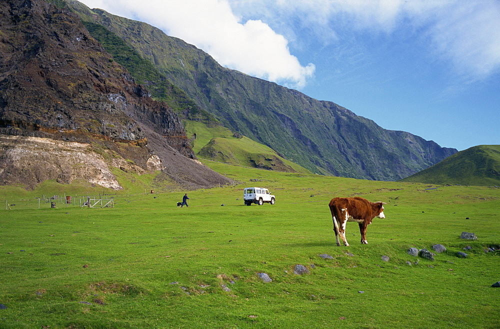 Pastures near settlement of Edinburgh, Tristan da Cunha, mid-Atlantic