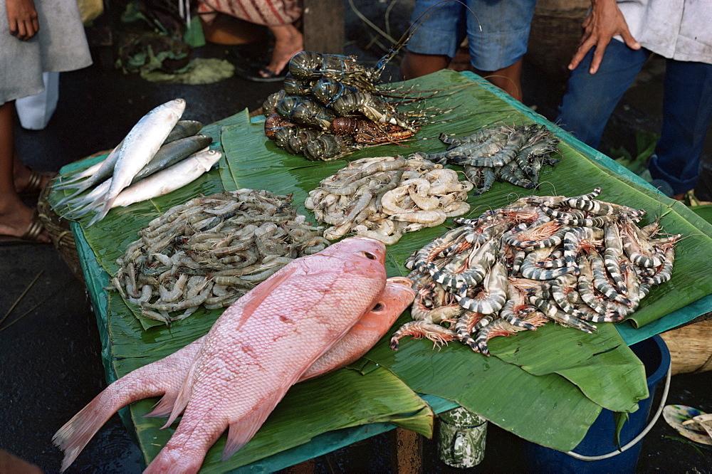 Fish market, Jakarta, Java, Indonesia, Southeast Asia, Asia