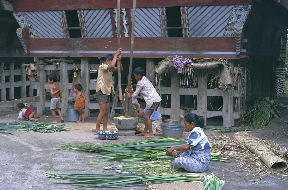 Village scene, Toba Bataks, North Sumatra, Sumatra, Indonesia, Southeast Asia, Asia
