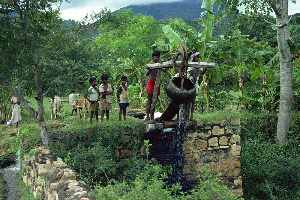Water well, Tamil Nadu state, India, Asia
