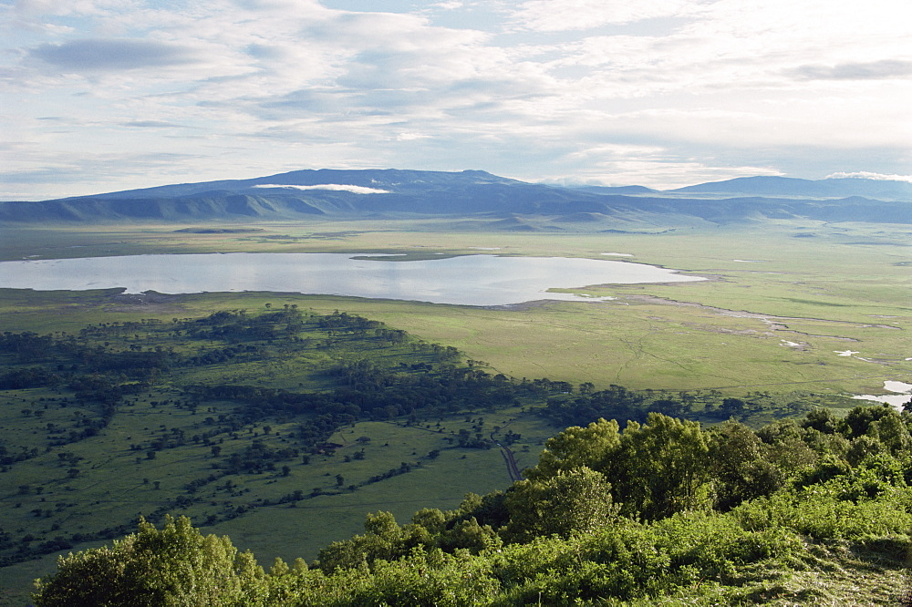Ngorongoro Crater, UNESCO World Heritage Site, Tanzania, East Africa, Africa - 2-19299