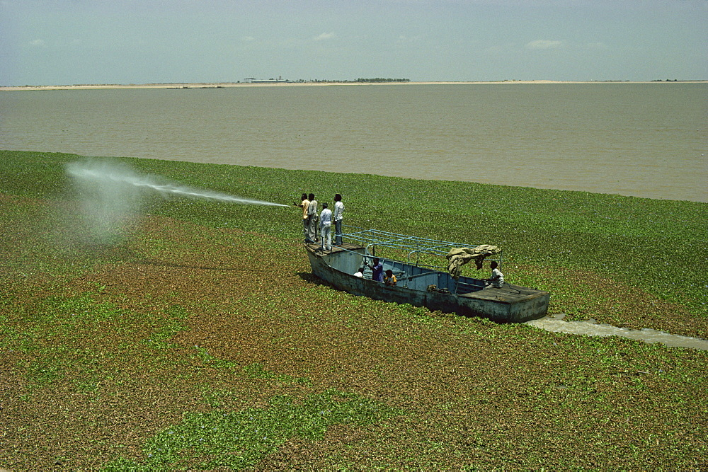 Spraying to eradicate water hyacinth at dam, Jebel Aulia, Sudan, Africa