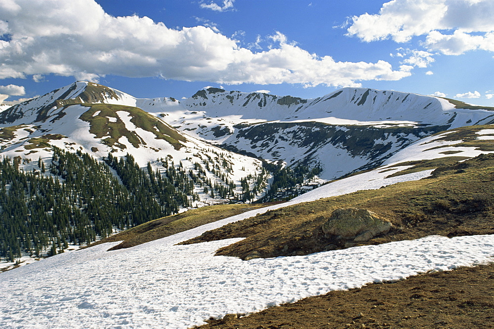 Snowy landscape in June, at Independence Pass, elevation 12095 ft, in the Sawatch Mountains, part of the Rockies, in Aspen, Colorado, United States of America, North America