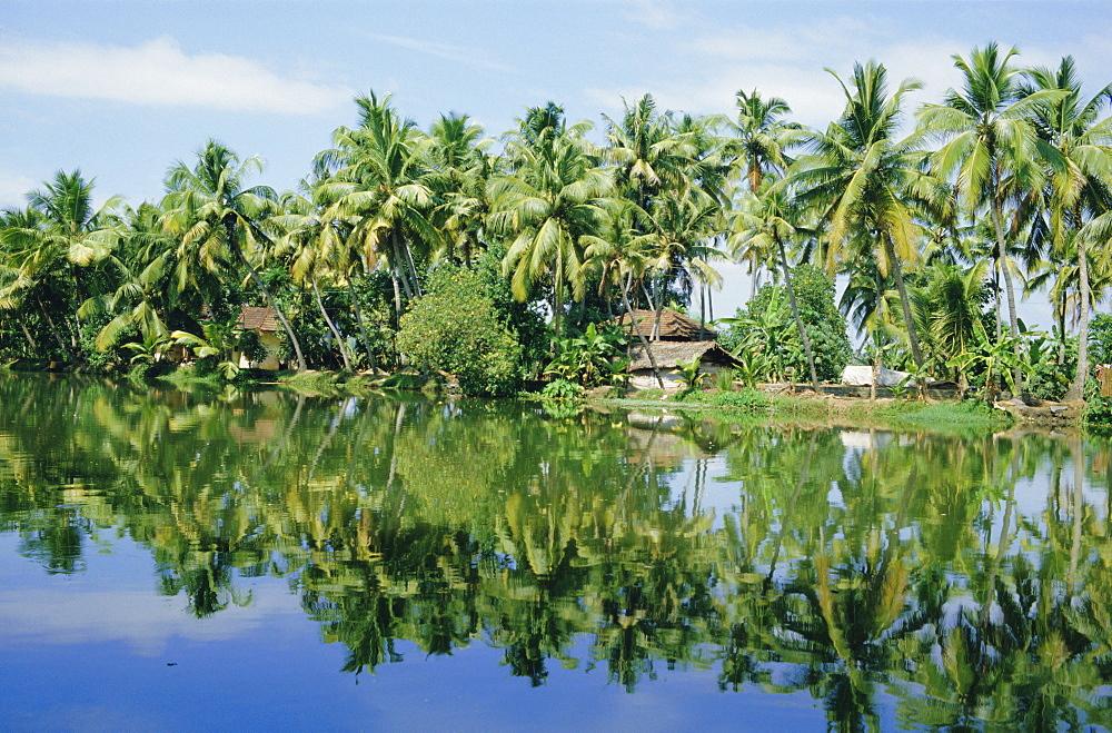 The backwaters near Kumarakom, Kerala State, India, Asia