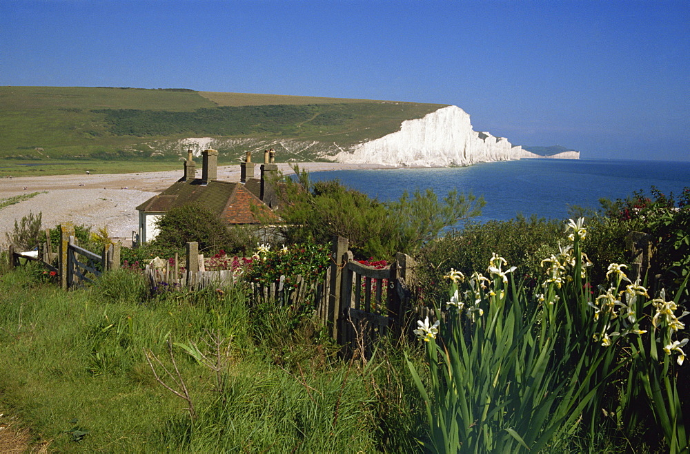 Cuckmere Haven and the Seven Sisters, East Sussex, England, United Kingdom, Europe - 225-2529