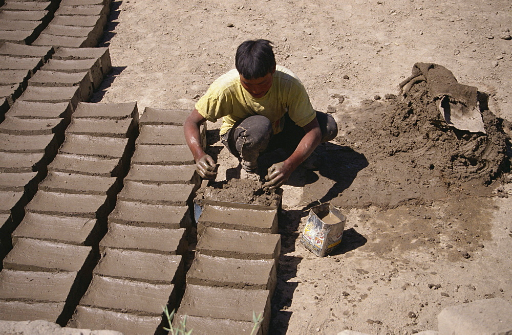 Man making mud bricks, Shey, Ladakh, India, Asia - 225-2669