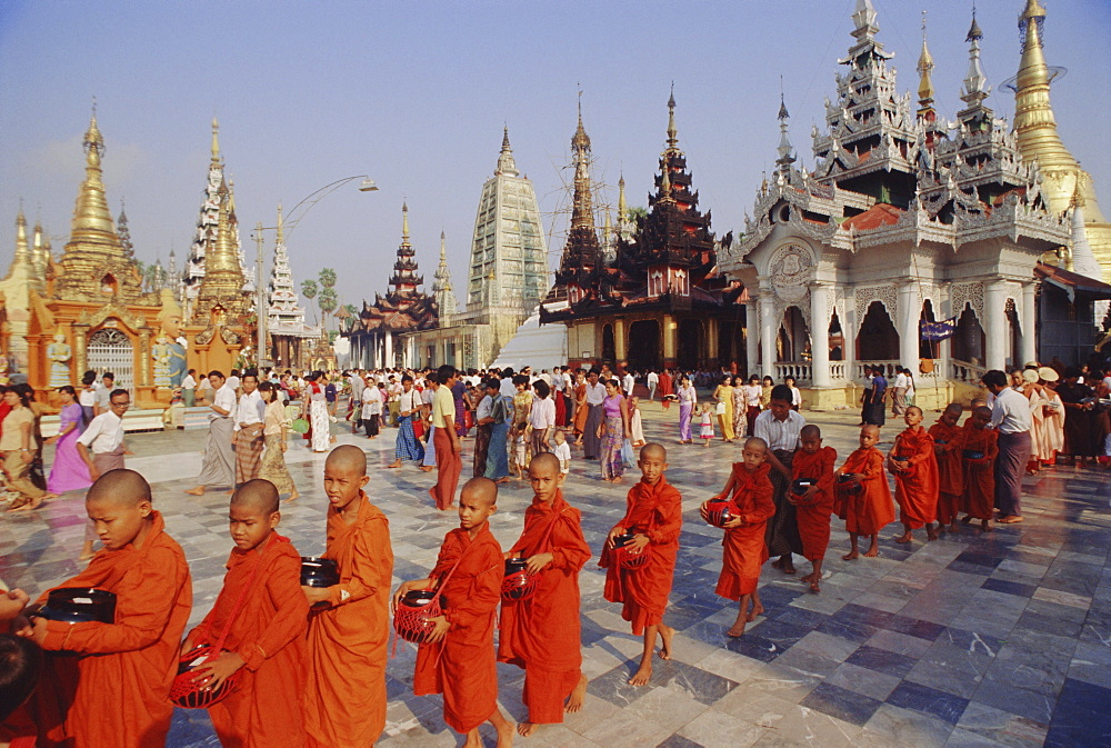 Line of Buddhist monks with begging bowls, Shwedagon (Shwe Dagon) Pagoda, Yangon (Rangoon), Myanmar (Burma), Asia - 238-2208