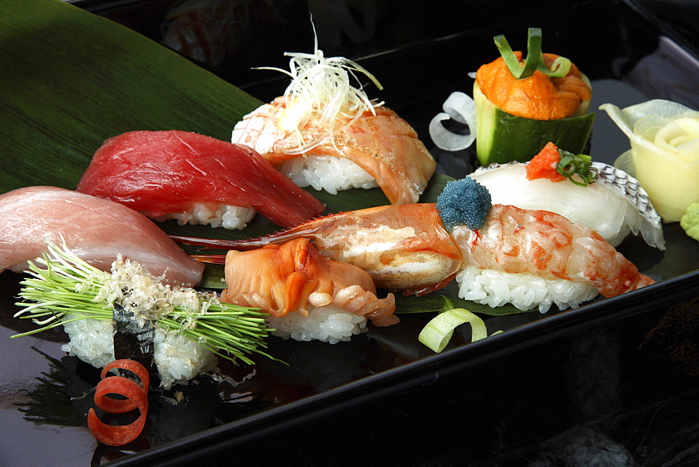 Close-up of sushi, Japan, Asia - 238-5394