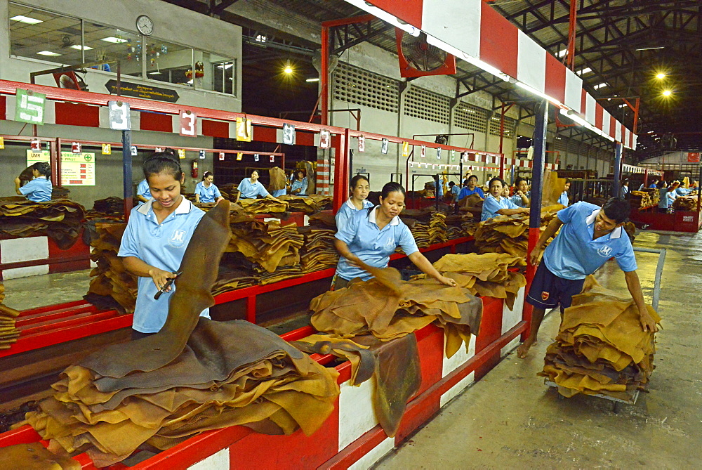Rubber processing plant, Trang, Thailand, Southeast Asia, Asia