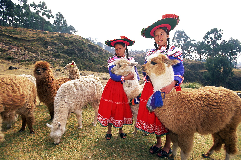 Portrait of two Peruvian girls in traditional dress, with their animals, near Cuzco, Peru, South America - 252-10475