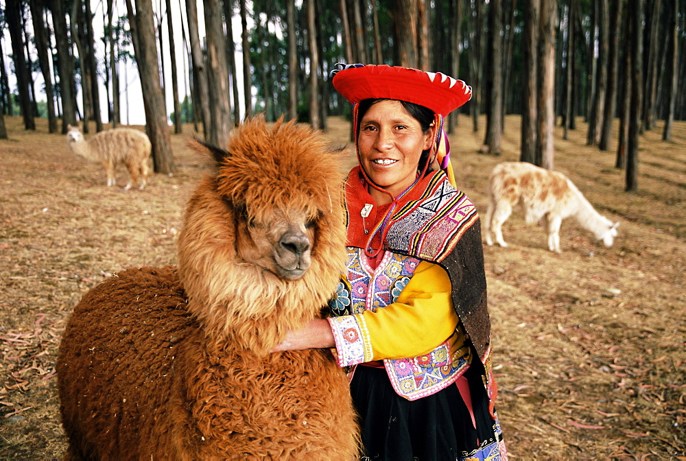 Local woman and Lama, Peru, South America