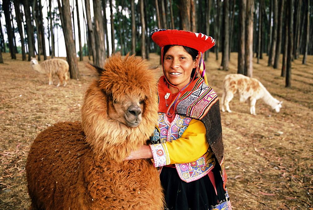 Local woman and Lama, Peru, South America - 252-10500