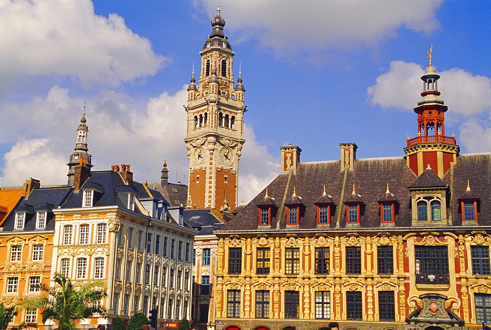 Flemish houses, belfry of the Nouvelle Bourse and Vielle Bourse, Grand Place, Lille, Nord, France, Europe