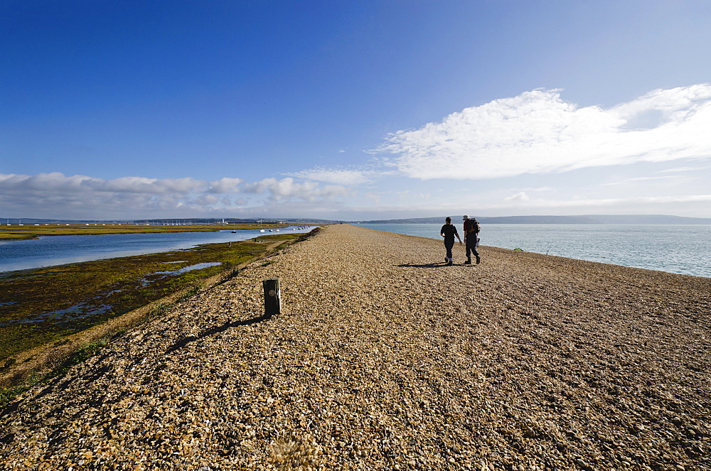 Hurst Spit, Keyhaven, Hampshire, England, United Kingdom, Europe - 255-8962