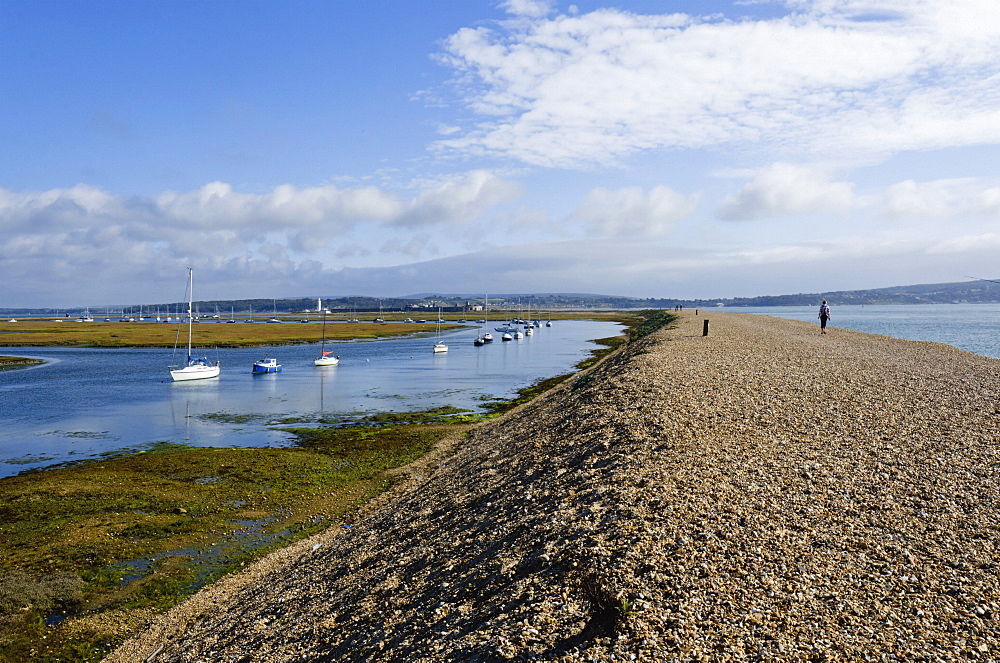 Hurst Spit, Keyhaven, Hampshire, England, United Kingdom, Europe - 255-8963