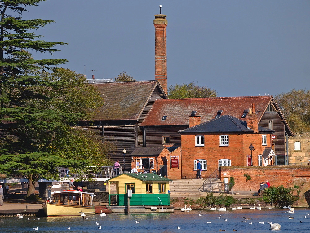 River Avon, Stratford-upon-Avon, Warwickshire, England, United Kingdom, Europe - 255-8971