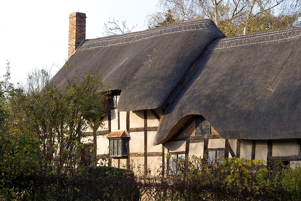 Anne Hathaway's cottage, home of William Shakespeare's wife, Shottery, Strratford-upon-Avon, Warwickshire, England, United Kingdom, Europe - 255-8978