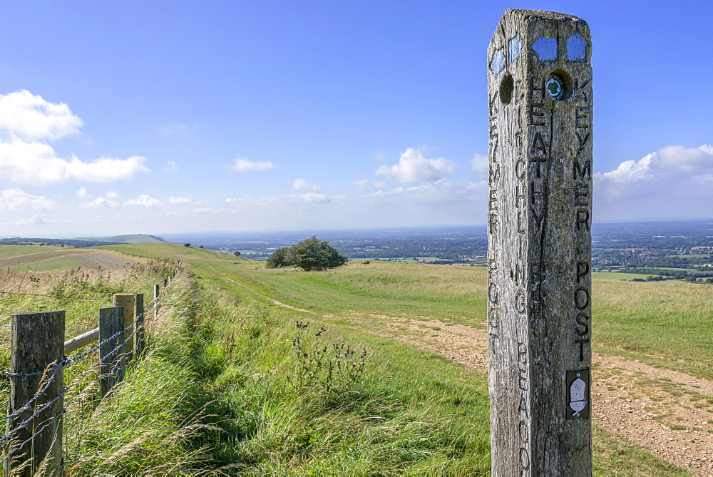 View from the South Downs Way footpath, Sussex, England, United Kingdom, Europe  - 255-8998
