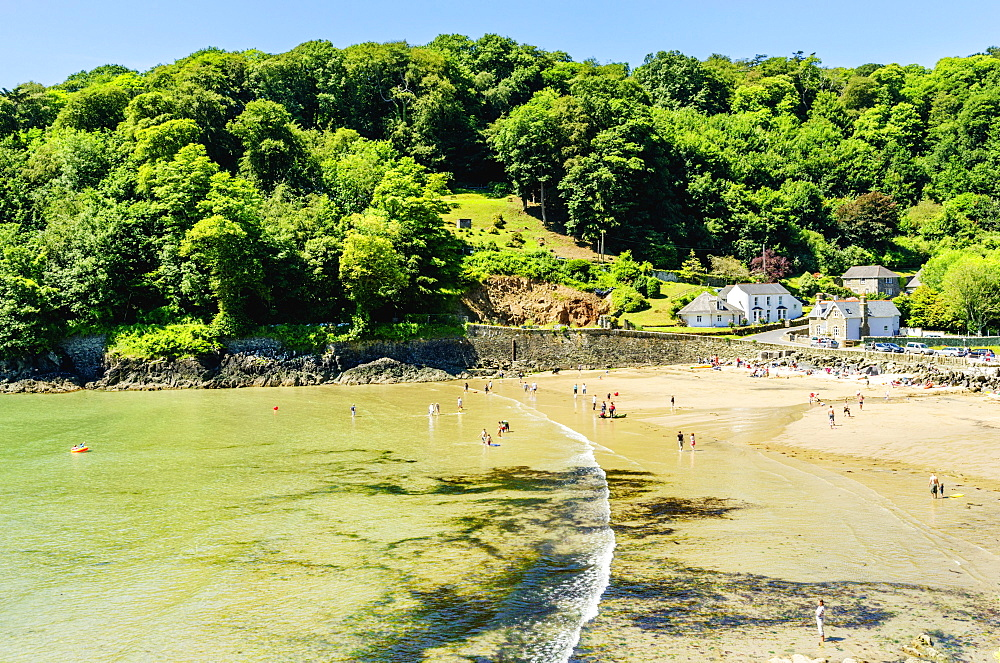 North Beach Bay, Salcombe, Devon, England, United Kingdom, Europe - 255-9036