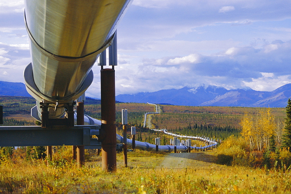 Trans Alaska oil pipeline across taiga through Alaskan Range carried on insulated ground piles, Alaska, USA