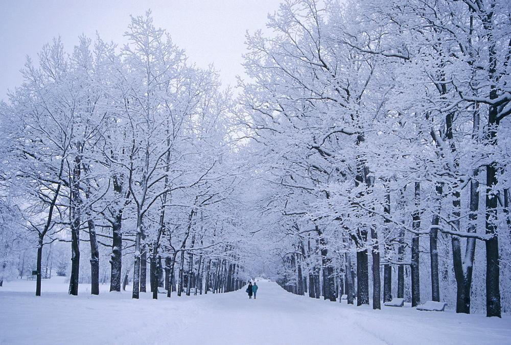 Catherine's Park in February, Tsarske Seloe (Puskin), St. Petersburg, Russia - 29-2116