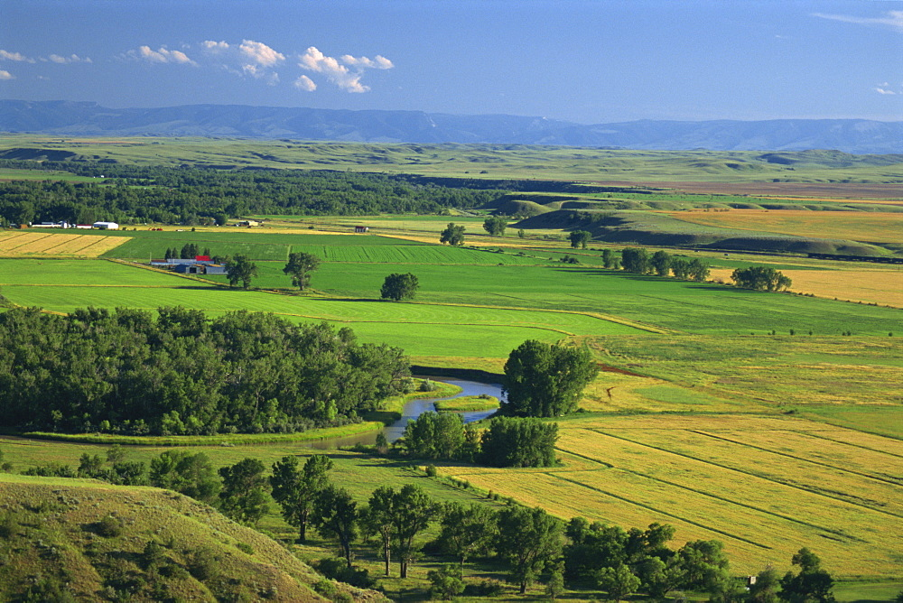 Agricultural landscape, in the valley of the Little Bighorn River, near Billings, Montana, United States of America, North America