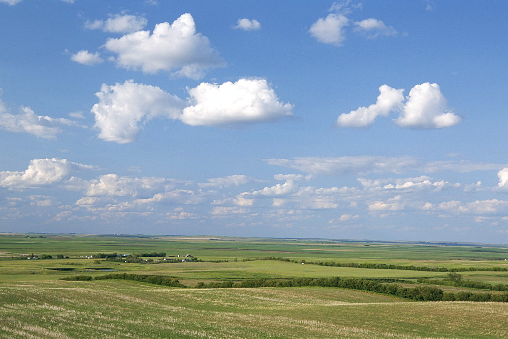 Prairie farmland, North Dakota, United States of America, North America