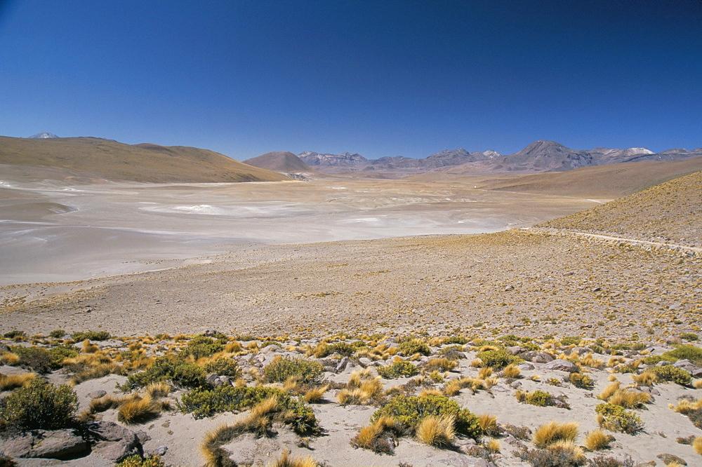 Altiplano and high-level volcanoes, El Tatio basin, above Calama, Atacama Desert, Chile, South America