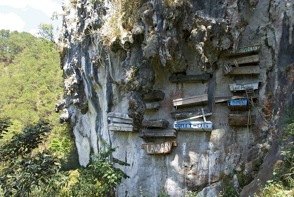 Animist hanging coffins still in use today, on limestone cliff in Echo Valley, Sagada, Cordillera, Luzon, Philippines, Southeast Asia, Asia