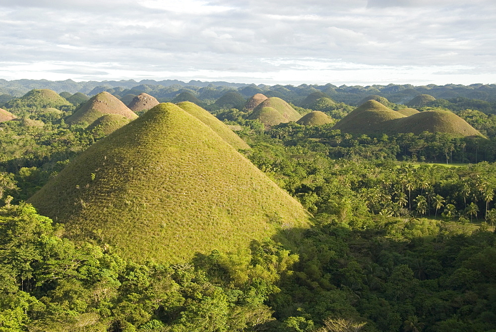 Chocolate Hills, conical hills in tropical limestone karst, Carmen, Bohol, Philippines, Southeast Asia, Asia