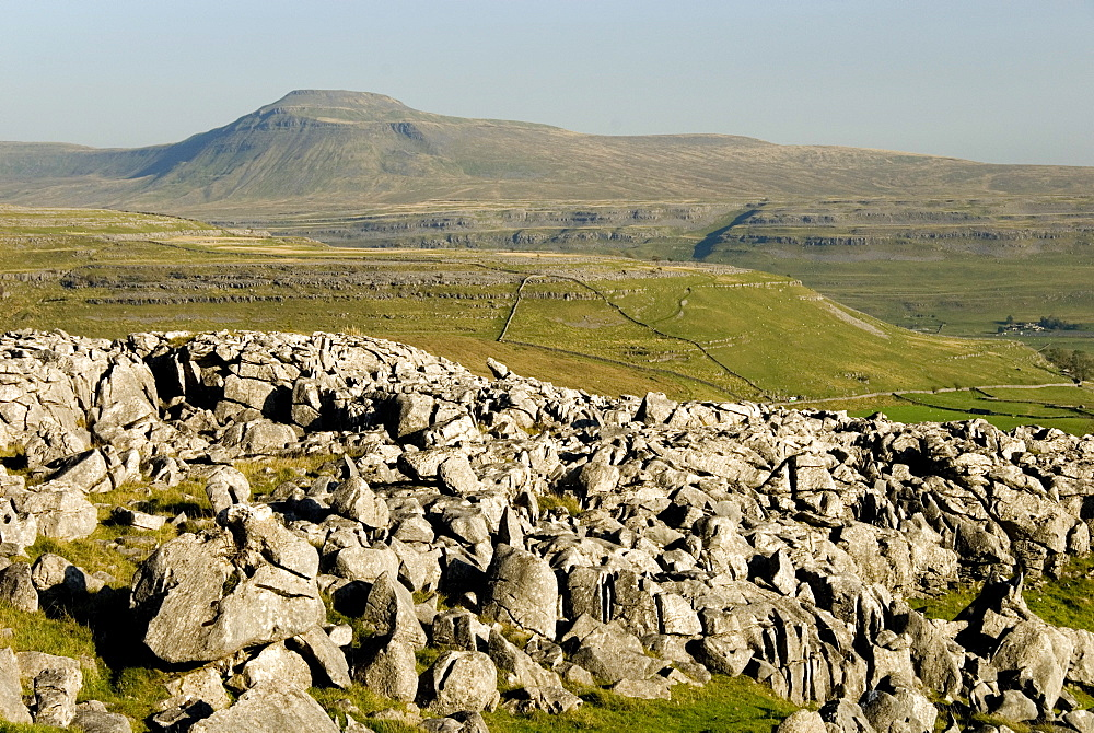 Ingleborough, seen from limestone benches above Kingsdale, Yorkshire Dales, Yorkshire, England, United Kingdom, Europe