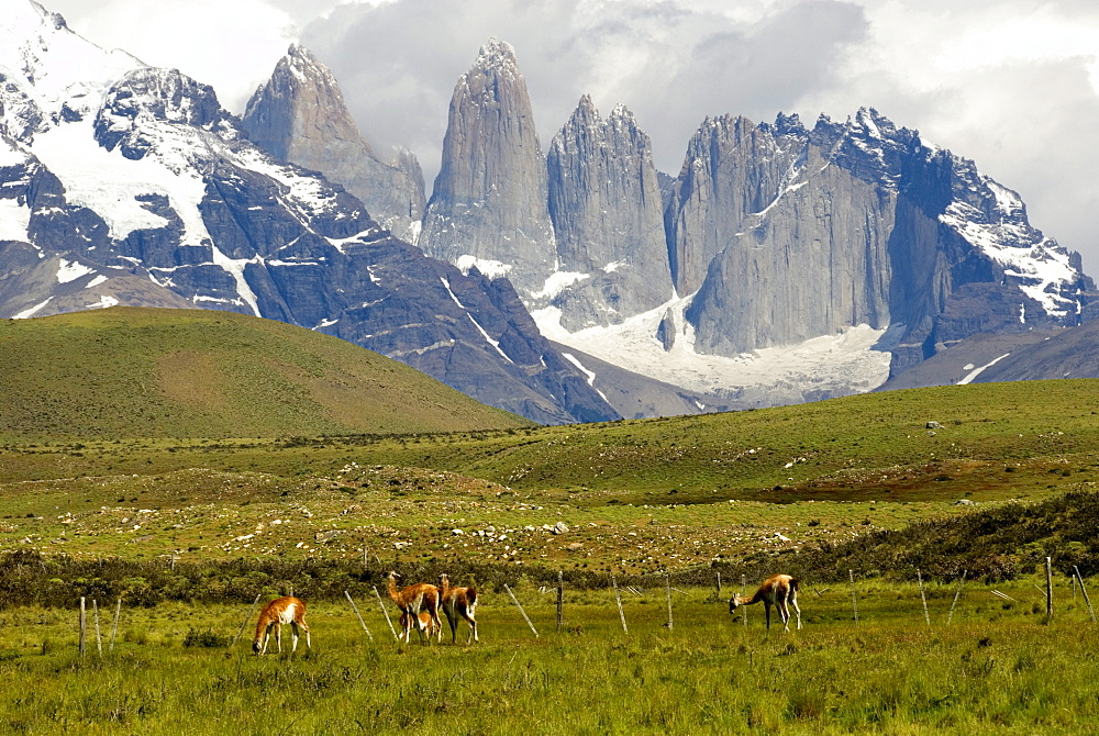 Torres del Paine, east faces of the granite towers, Torres del Paine National Park, Patagonia, Chile, South America