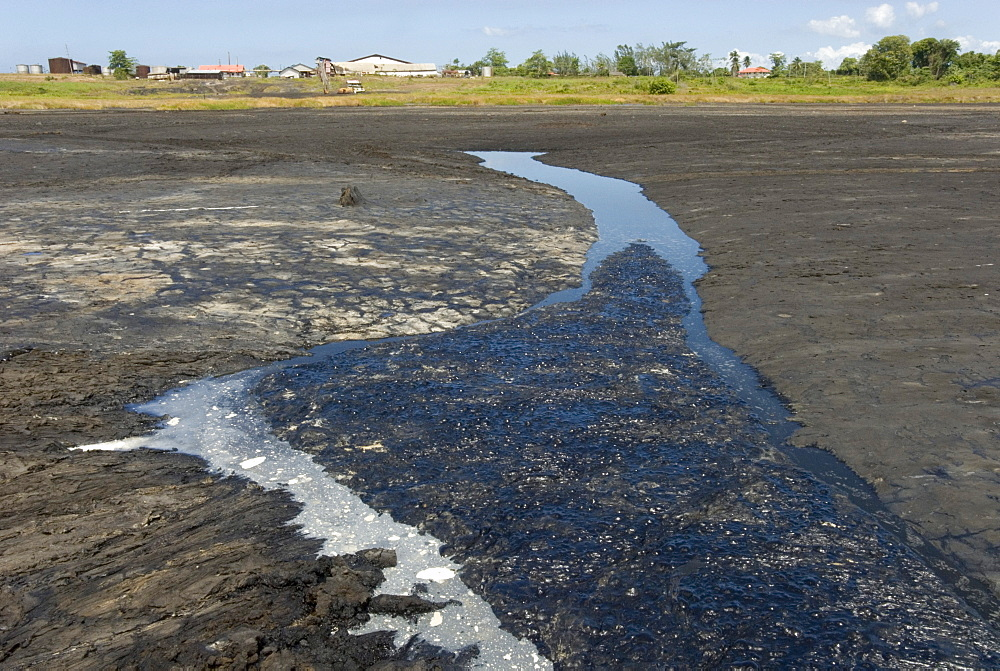 La Brea Pitch Lake, natural lake of tar rising from below with crust that can be walked on, near San Fernando, Trinidad, West Indies, Caribbean, Central America