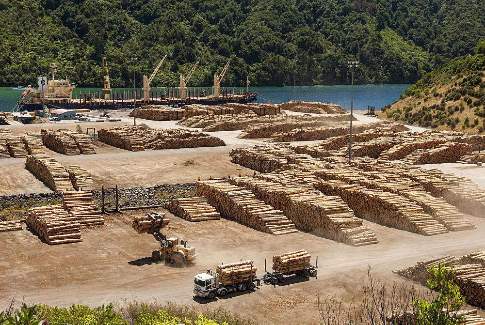 Timber port, Okiwa Bay, Marlborough Sounds, South Island, New Zealand, Pacific