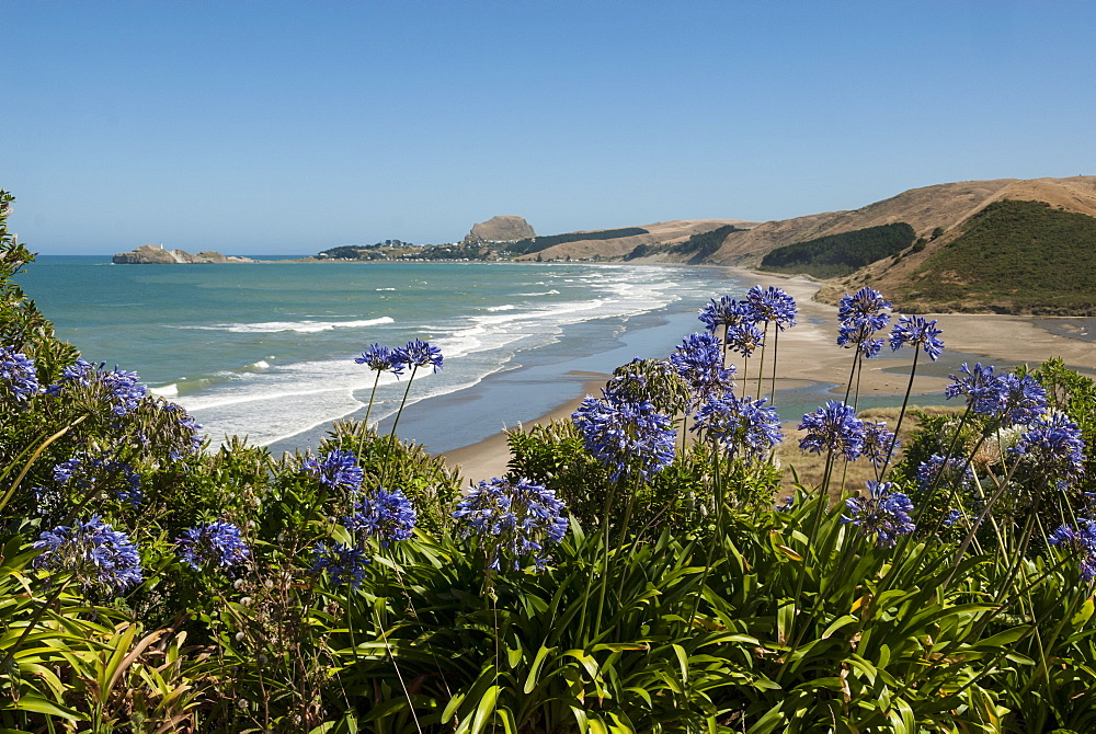 Castlepoint, southeast coast, North Island, New Zealand, Pacific - 29-5381