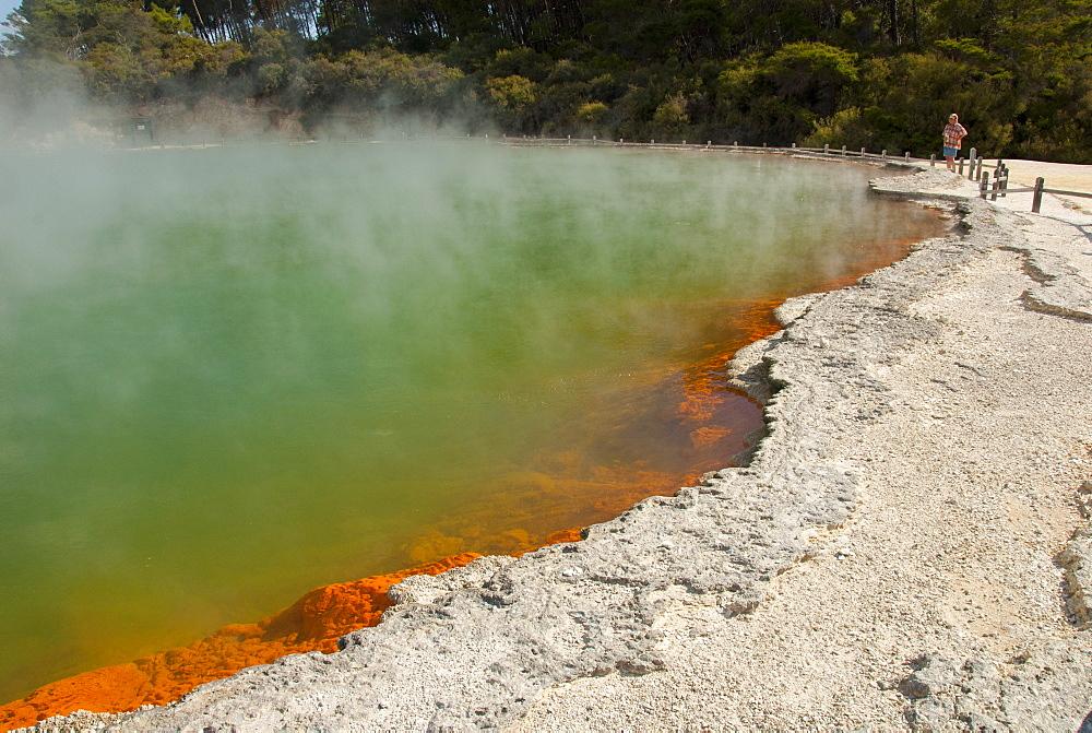 Champagne Pool, in Waiotapu geothermal area, Rotorua, North Island, New Zealand, Pacific