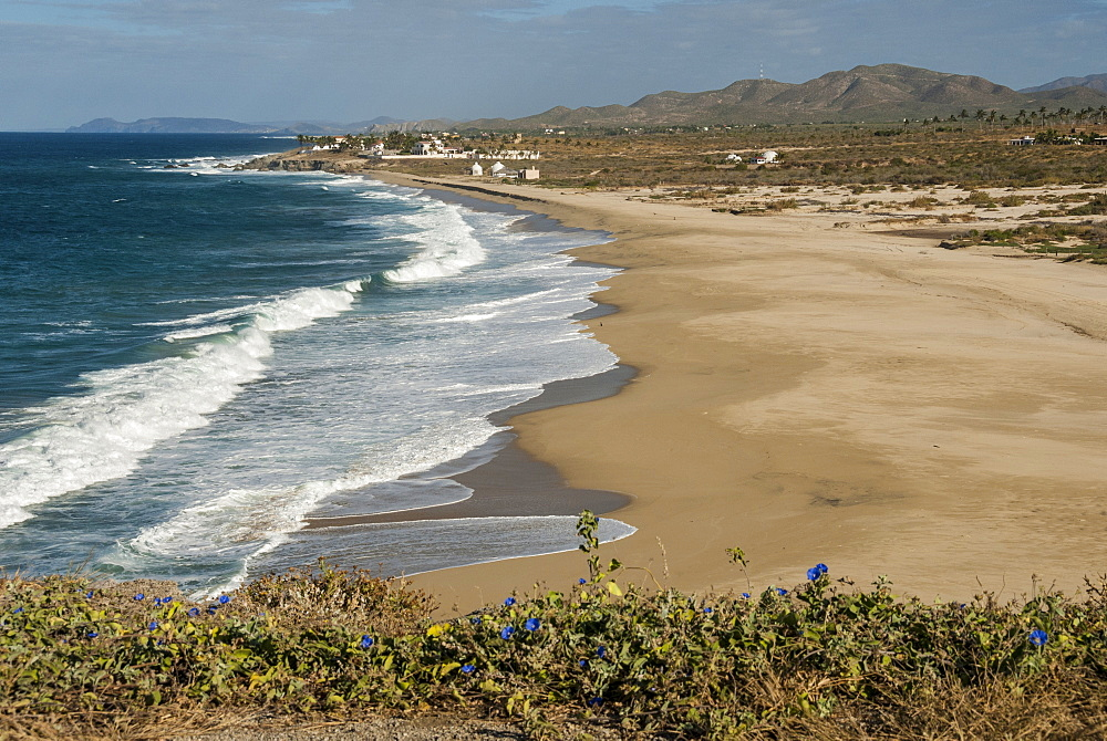 Punta Gasparena, Pacific coast south from Todos Santos, Baja California, Mexico, North America - 29-5412