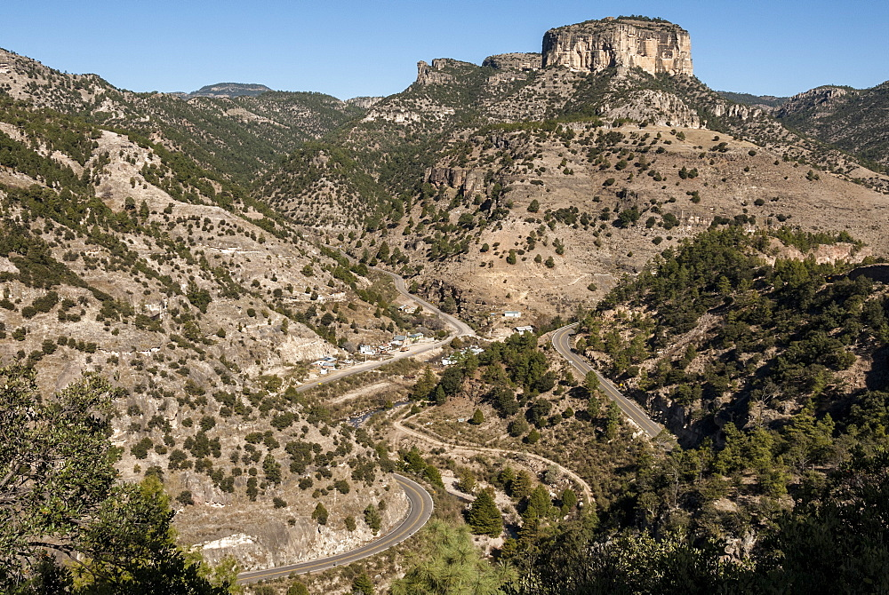 Volcanic plateau of Sierra Tarahumara, above Copper Canyon, Chihuahua, Mexico, North America - 29-5416