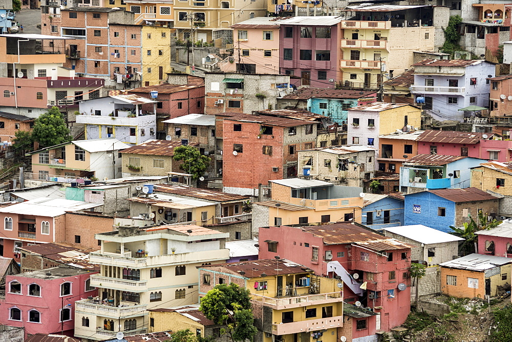 Las Penas barrio, historic centre on the hill of Cerro Santa Ana, Guayaquil, Ecuador, South America - 29-5426