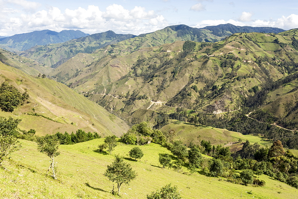 Southern highlands near Saraguro, Ecuador, South America - 29-5430