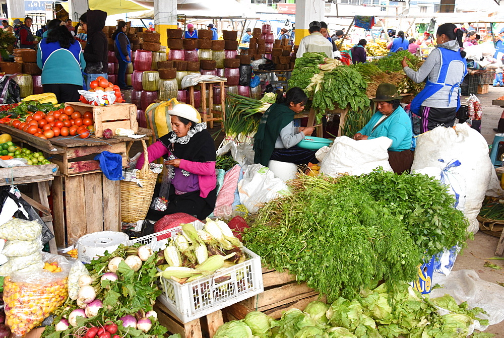 Thursday markets, Saquisili, Ecuador, South America