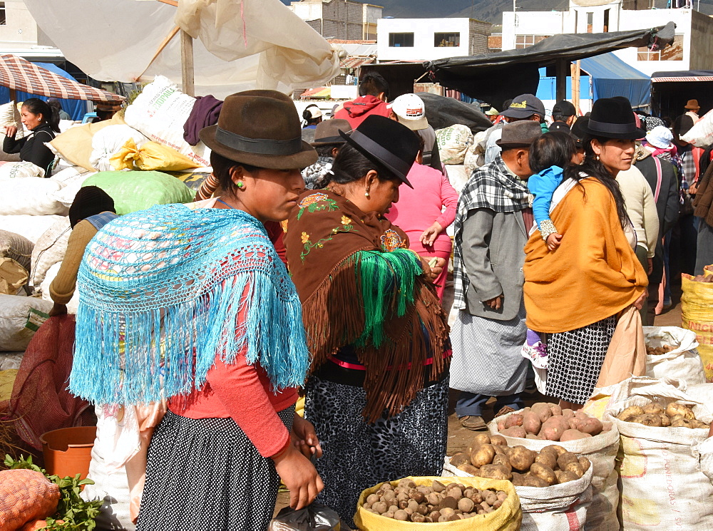 Thursday markets, Saquisili, Ecuador, South America - 29-5435