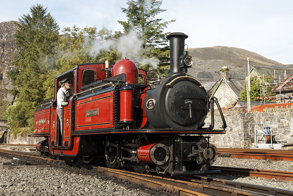 Steam engine, Ffestiniog Railway, Gwynedd, North Wales, Wales, United Kingdom, Europe - 29-5484
